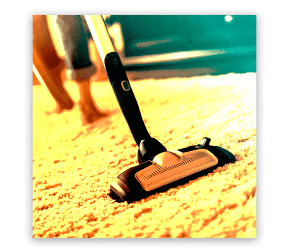 Professional Carpet Cleaning Fulham Gardens